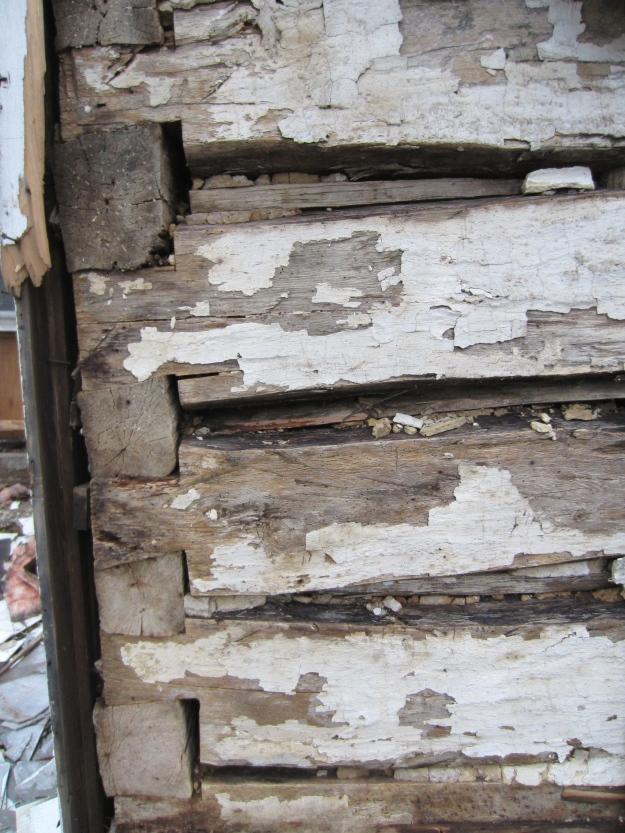 Oak logs and full dovetail corner notching