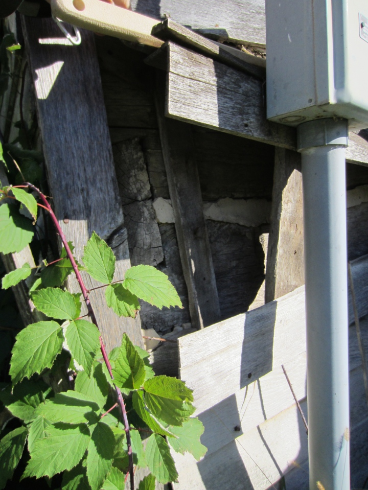 Mortar between log courses further eliminate wind intrusion.